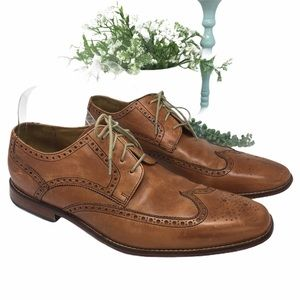Cole Haan Brown Oxford Wingtips Shoes. Size 14
